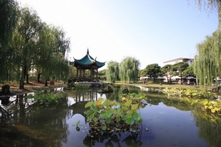 Wuhan01.jpg